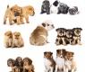 Consigli per cuccioli irrequieti