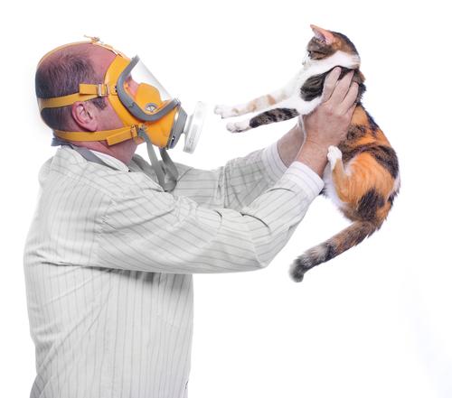 Come ridurre i sintomi dell'allergia agli animali