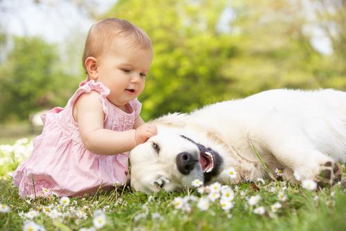 Animali, i migliori compagni di giochi dei bambini