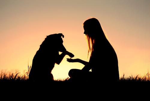 cane-e-uomo