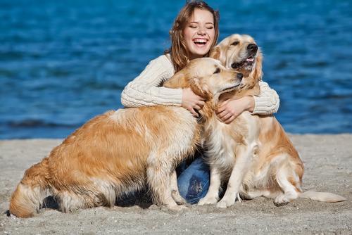 Uno studio scientifico dimostra che i cani ci amano come membri della loro famiglia