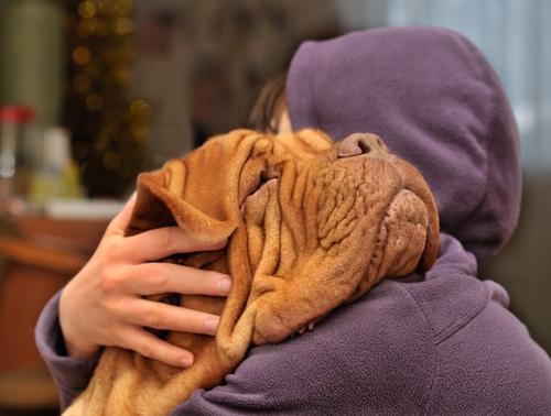 ragazza abbraccia cane
