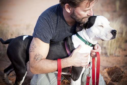 Come educare un cane geloso