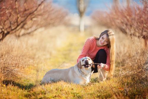 Educare il cane senza ricorrere alla violenza