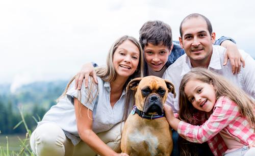Come far adattare un cucciolo alla sua nuova casa