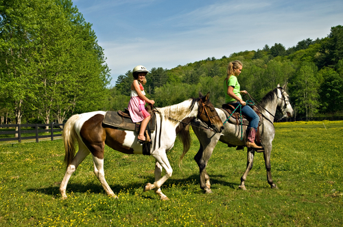 Ippoterapia: i cavalli vi aiutano