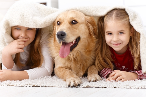labrador-con-bambini