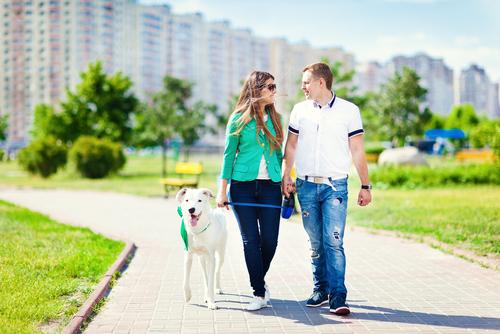 Benefici che i cani apportano alla nostra salute
