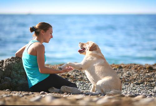 telepatia canina tra labrador e ragazza