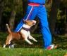 attività fisica-cane