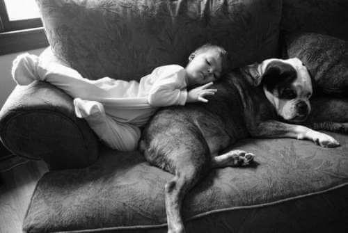 bambino e cane dormendo