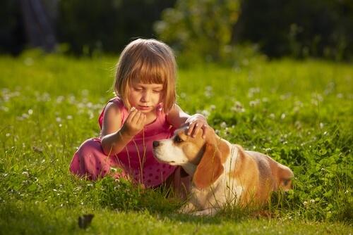 beagle-con-bambina