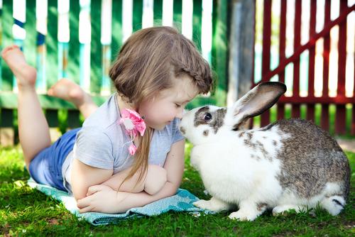bimba-con-coniglio