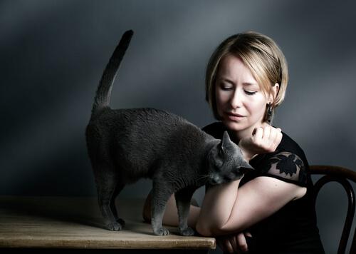 gatto-strofina-la-testa-2