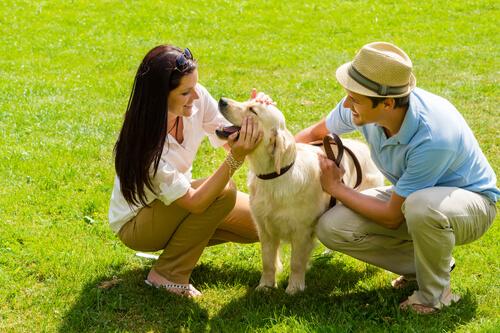 Quando cane e padrone si riuniscono