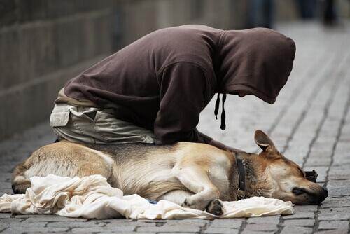mendicante e cane 3