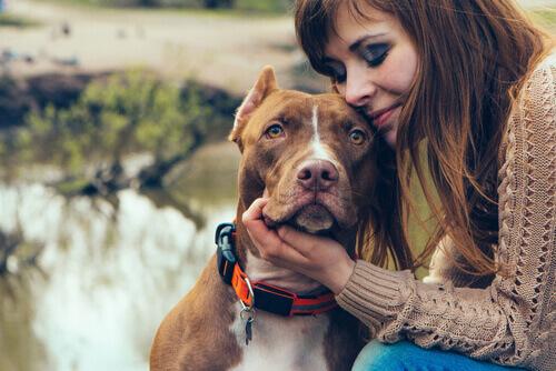 Amore padrone-cane Vs amore madre-figlio