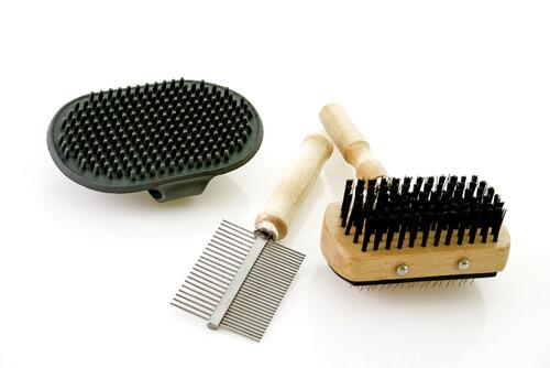 spazzole per animali
