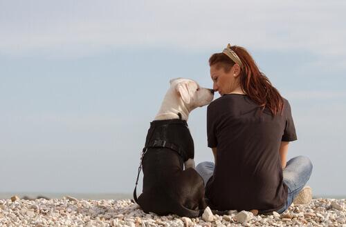 ragazza bacia cane
