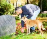 cane-cimitero
