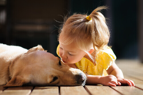 bambina-con-cane
