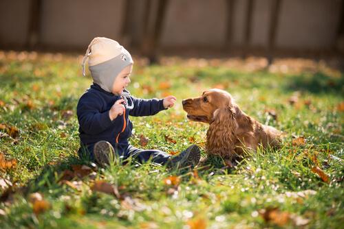 bambino-e-cane