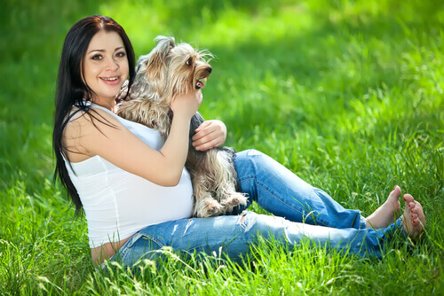 I cani percepiscono la gravidanza?