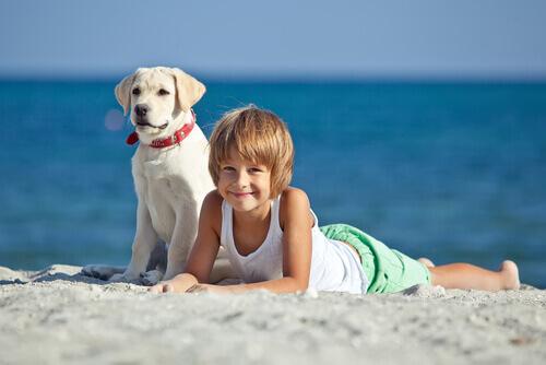 I cani aiutano i bambini autistici a socializzare