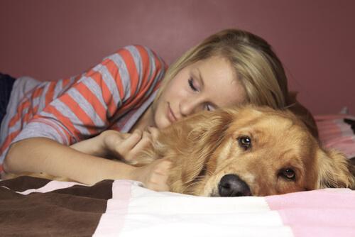 cane e donna letto