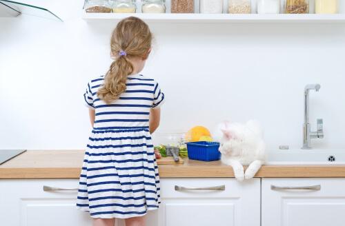 bambina in cucina e gatto bianco