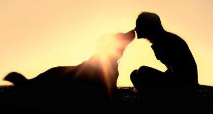 cane-ragazza-naso