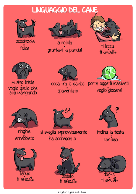 linguaggio-canino