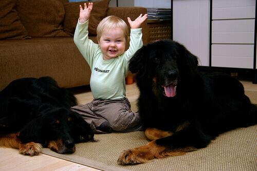 L'amore per gli animali nasce durante l'infanzia