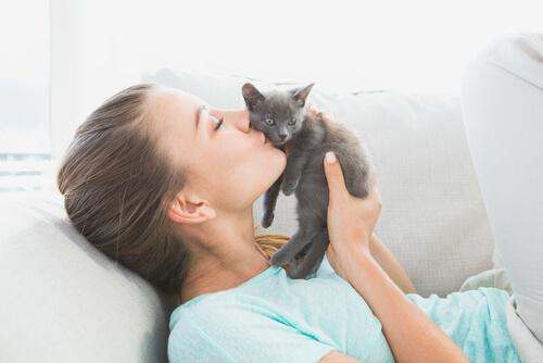 gattino grigio e ragazza