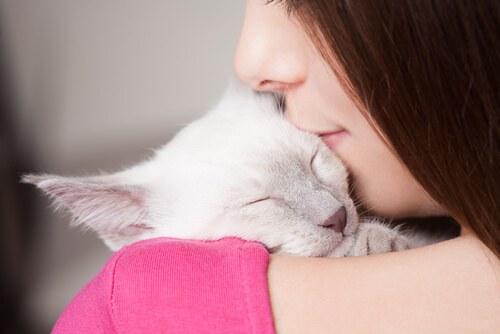 ragazza bacia gatto