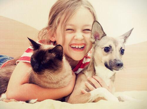 Effetto cane-gatto: qualunque situazione è migliore con un animale