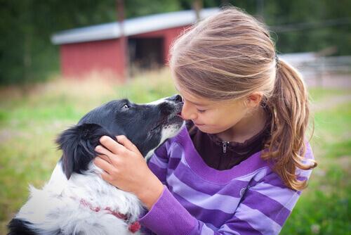 Qual è il cane ideale per i bambini?