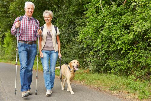 andare in pensione e far passeggiare i cani