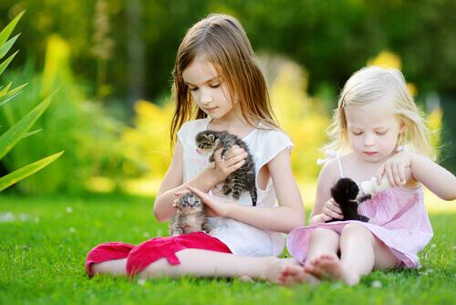 bambine-con-gattini