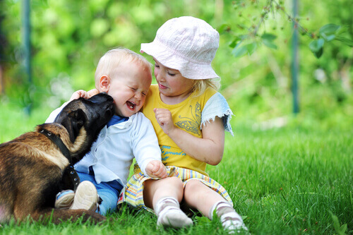 bambini e cane sul prato