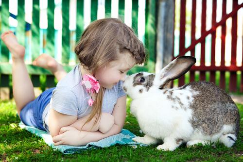 bambina e coniglio