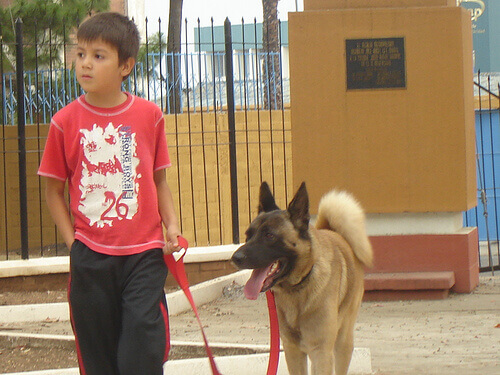 bambino con cane al guinzaglio