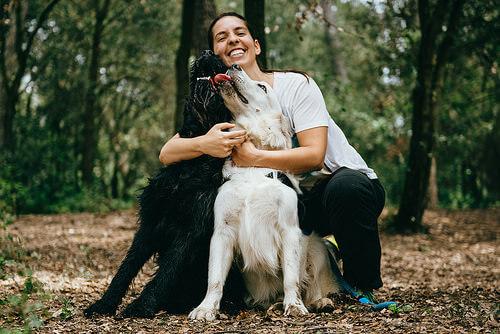 donna-e-due-cani-nel-bosco