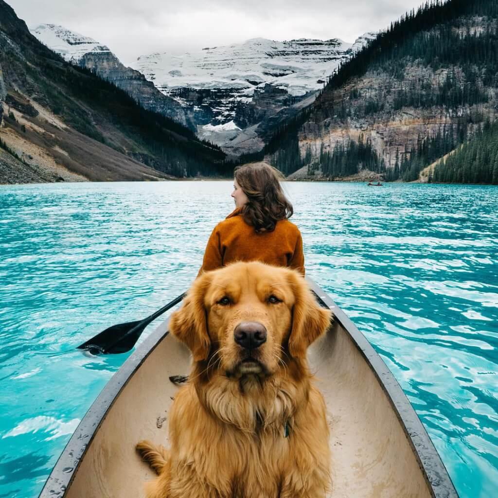 Aspen, il cane con 130mila follower su Instagram