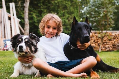 bambino con cani