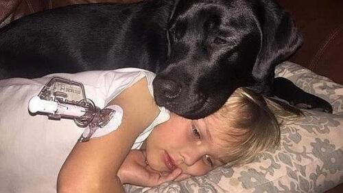 bambino malato con cane