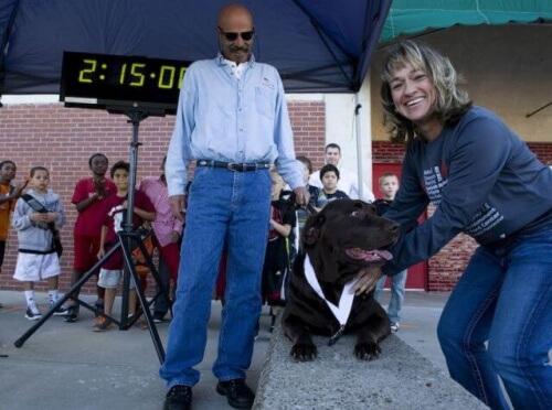 cagnolina partecipa a una mezza maratona
