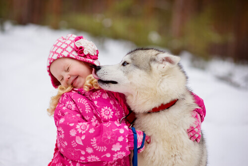 Perché i cani amano leccare il viso?