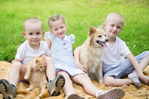 bambini-con-cane-e-gatto