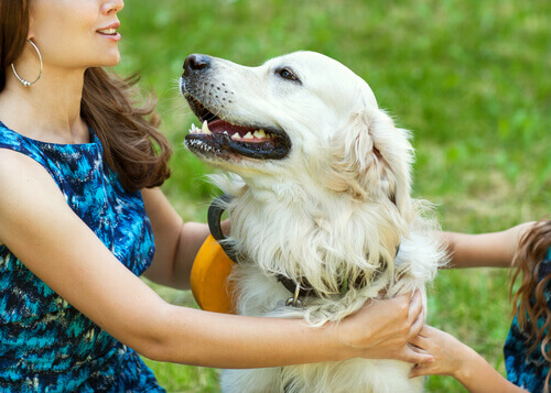 cane-abbracciato-a-ragazza